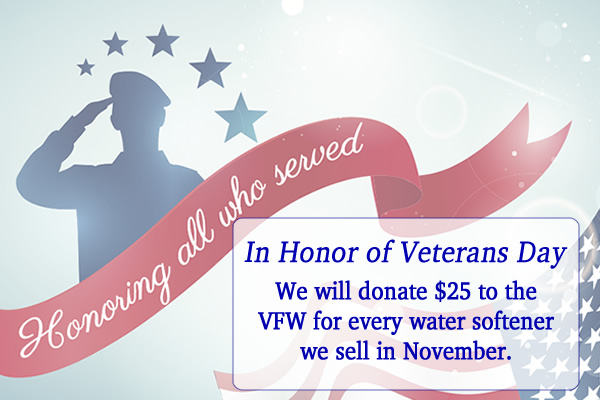 In Support Of Veterans Day