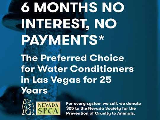 6 Months no interest no payments