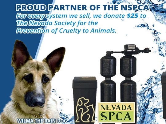 Proud Partner of the NSPCA